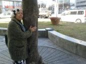 Tree hug Nagoya